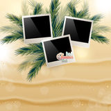 Solar gierki day with photos on the Golden sand palm. Solar gierki day with photos on the Golden sand on palm leaves Royalty Free Stock Photos