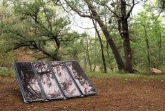 Solar im Wald Stockfotografie