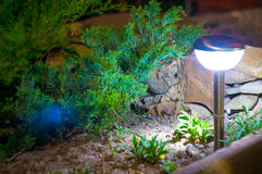 Solar lanterns garden light Royalty Free Stock Photography