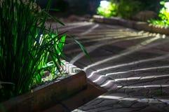 Solar lanterns garden light Stock Images