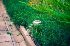 Solar lanterns garden light with shrubs Stock Photo