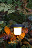 Solar light. Energy saving solar light in a garden Royalty Free Stock Photo