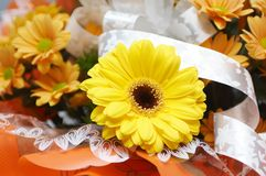 Solar mood. Bouquet from orange chrysanthemums and yellow daisy Stock Image