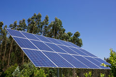 Solar Panel. Against a background of green trees Royalty Free Stock Photos