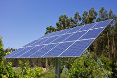 Solar Panel. Against a background of green trees Stock Photography