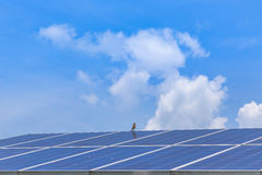 Solar panel alternative  energy Royalty Free Stock Image