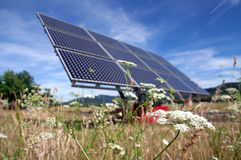 Solar Panel And Flower Stock Images