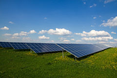 Solar panel farm stock photo