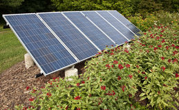 Solar panel in a garden Stock Photos