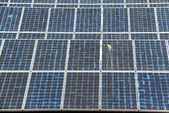 Solar panel generating electricity clean energy. Eco power, Photovoltaic, Alternative electricity source, Solar panel generating electricity clean energy royalty free stock image