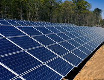 Solar panel grid with trees in background. Solar panel grid lined up with green trees in the background Royalty Free Stock Photography
