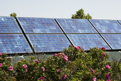 Solar Panels 1. Solar panels with landscaping in an urban setting Stock Image