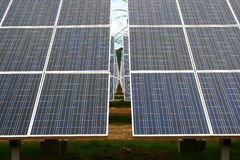 Solar panels. Array of alternative energy photovoltaic solar panels Stock Photos