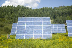 Solar Panels. In Field of Flowers stock photography