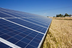 Solar Panels. In a gold field Royalty Free Stock Image