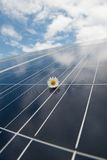 Solar panels against blue sky. Solar panels against cloudy blue sky with a white flower above Royalty Free Stock Photography