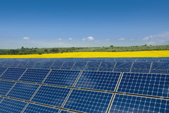 Solar panels against a rapeseed field Royalty Free Stock Images
