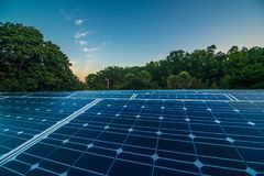 Solar panels at dawn. Blue solar panels at sunrise in Florida royalty free stock photo