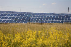 solar panels and field Royalty Free Stock Photography