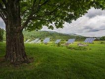 Solar panels in field. Solar panels on green suburban landscape Stock Photos