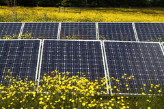 Solar panels in field Royalty Free Stock Photography
