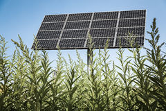 Solar panels in the green. Clean energy background Royalty Free Stock Photos