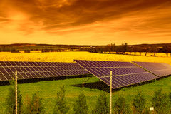 Solar panels on green grass at sunset Stock Photography