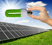 Solar panels. With hand holding green bulb Stock Photography