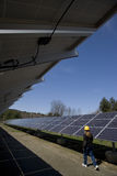 Solar panels inspected by worker Royalty Free Stock Photo