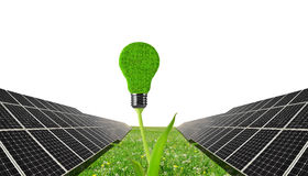 Solar panels with lightbulb on plant . Royalty Free Stock Photography