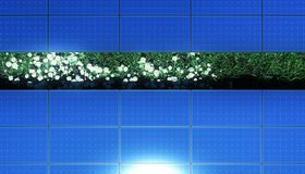 Solar panels over grass and daisies Stock Photos