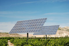 Solar panels at a plantation Stock Photo