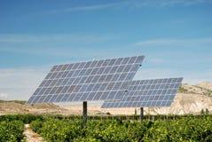 Solar panels at a plantation Stock Photo