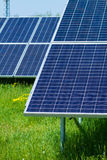 Solar panels produces green Royalty Free Stock Image