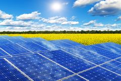 Solar panels in rape field. Creative solar power generation technology, alternative energy and environment protection ecology business concept: group of solar Stock Photo