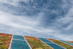 Solar panels on a roof covered with sedum Royalty Free Stock Image