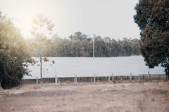 Solar panels solar cell in solar farm with sun lighting to cre Royalty Free Stock Photos