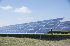 Solar panels in a solar energy park Royalty Free Stock Photo