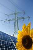 Solar panels, sunflower, utility pole with wires Royalty Free Stock Photo