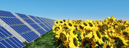 Solar panels and sunflowers Royalty Free Stock Photo