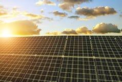 Solar panels at sunset. Stock Image