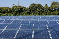 Solar panels and trees. Close up solar panels in front of lined with trees Royalty Free Stock Photo