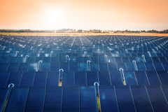 Solar park in the sunrise Stock Image