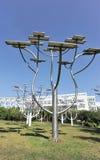 Solar pela estrutura de árvore Fotos de Stock