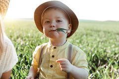 Solar photo of a boy on the field. small boy in a village playing in the grass and chewing a twig Stock Image