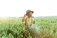 Solar photo of a boy on the field. small boy in a village playing in the grass and smiling Stock Photo