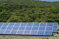 Solar power and forest Stock Images
