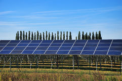 Solar power, plant energy Royalty Free Stock Photos