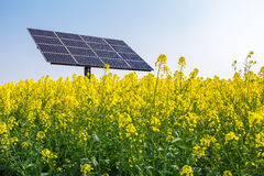 Solar power in spring Stock Images