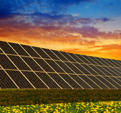 Solar power station on the spring flowering meadow at sunset. Royalty Free Stock Images